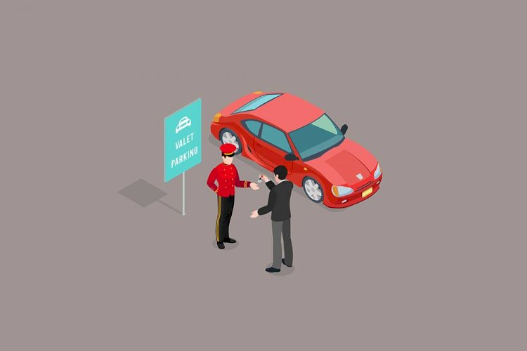 Valet Domain Parking